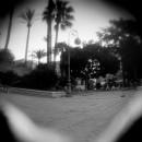 ©ferrando_EFYS_Cartoline_estate_F04